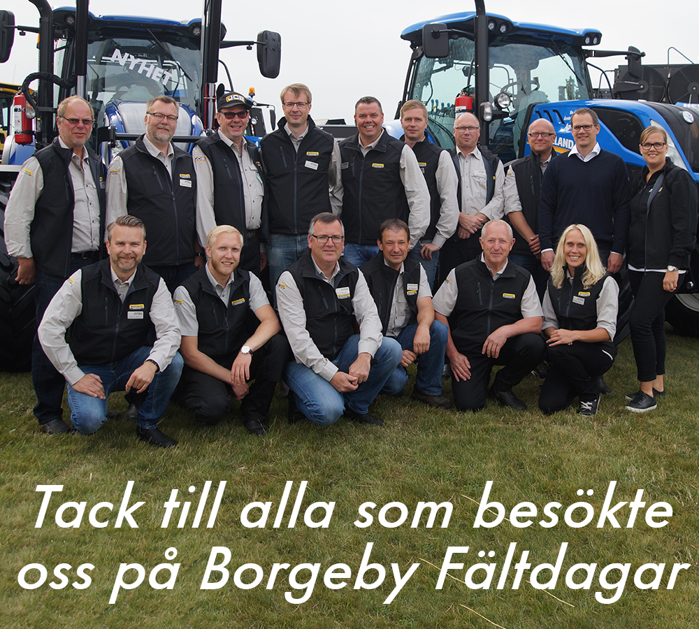 Borgeby-2
